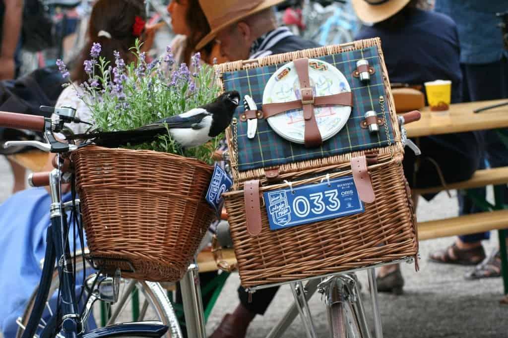 Basket Elster Bike Velo Style  - Rollstein / Pixabay