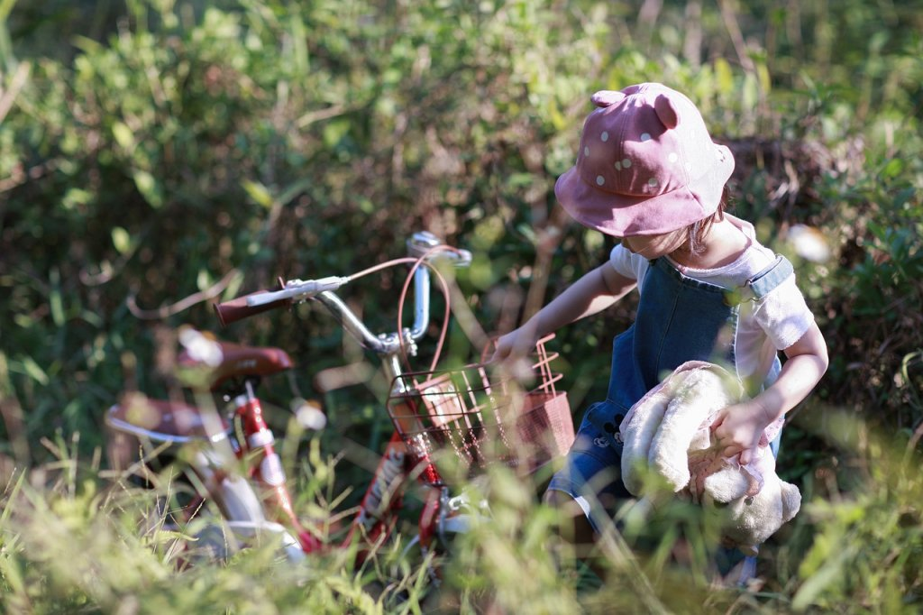 Child Bike Field Childhood Kid  - Hainguyen1982 / Pixabay